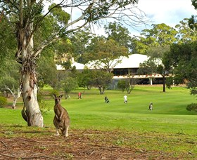 Pambula Merimbula Golf Club - Restaurant Find