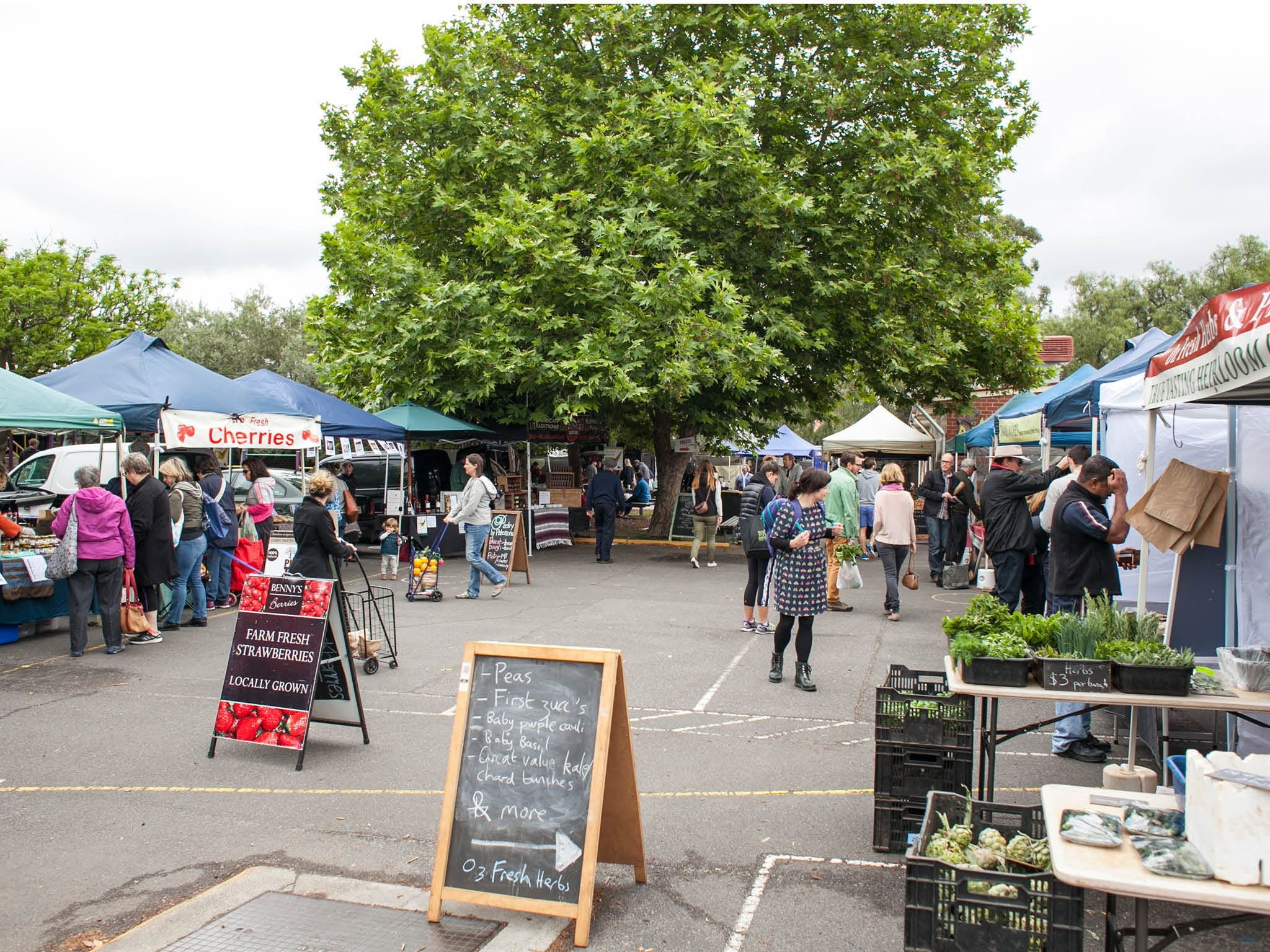 Alphington Farmers' Market - Restaurant Find