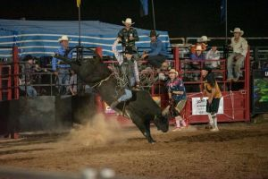 Black Opal Bull and Bronc Ride - Restaurant Find