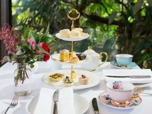 High Tea at Melbourne Zoo - Restaurant Find