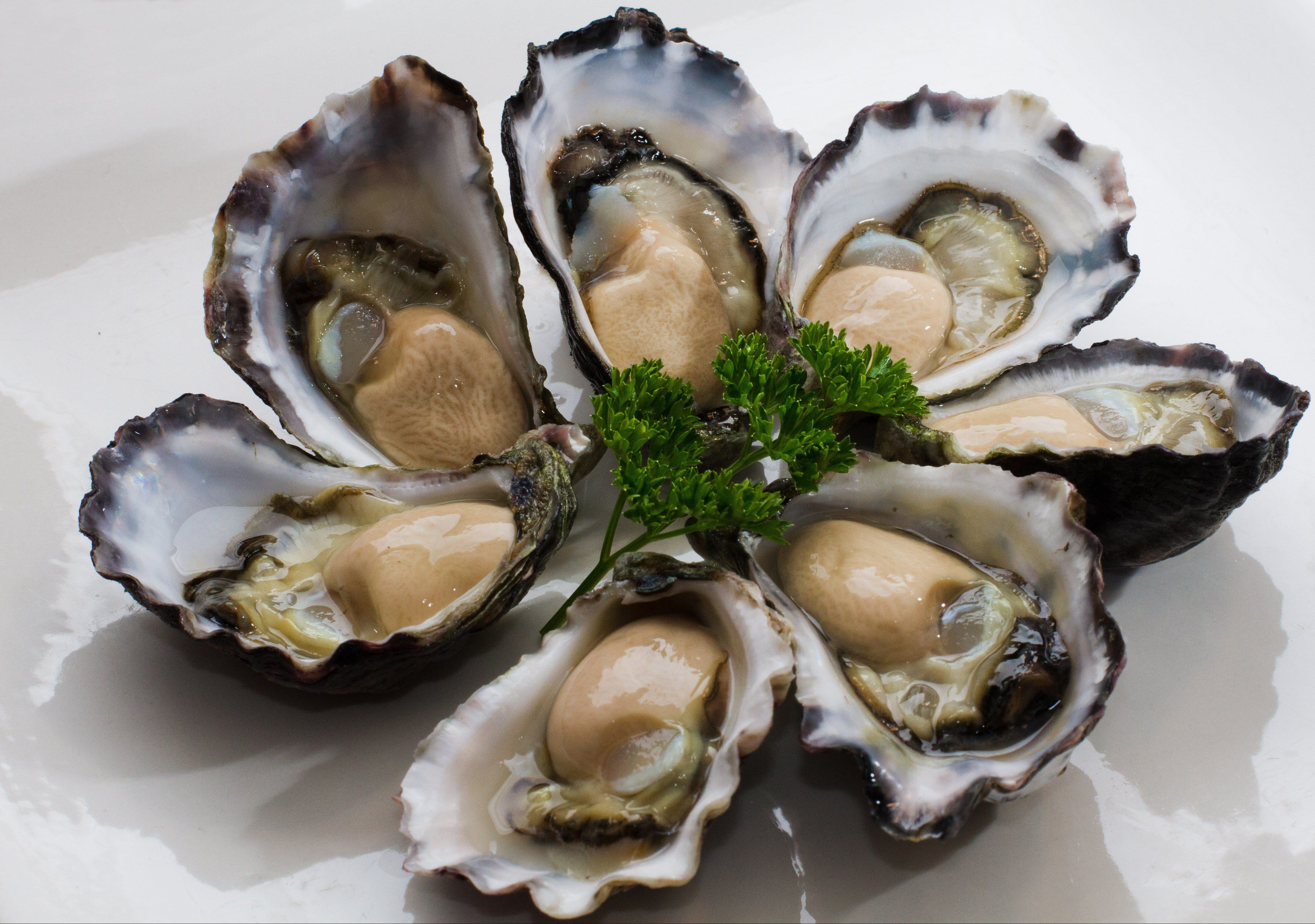 Tathra Oysters - Restaurant Find