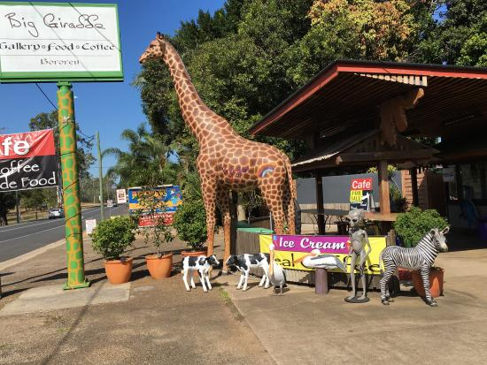 The Big Giraffe - Restaurant Find